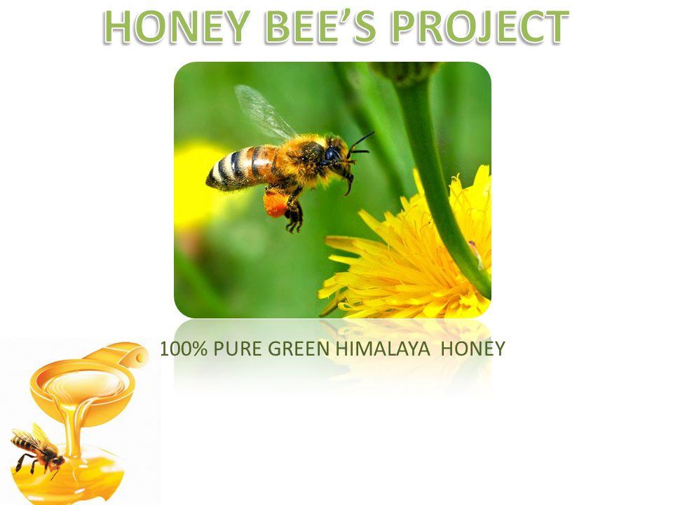 100% PURE GREEN HIMALAYA HONEY