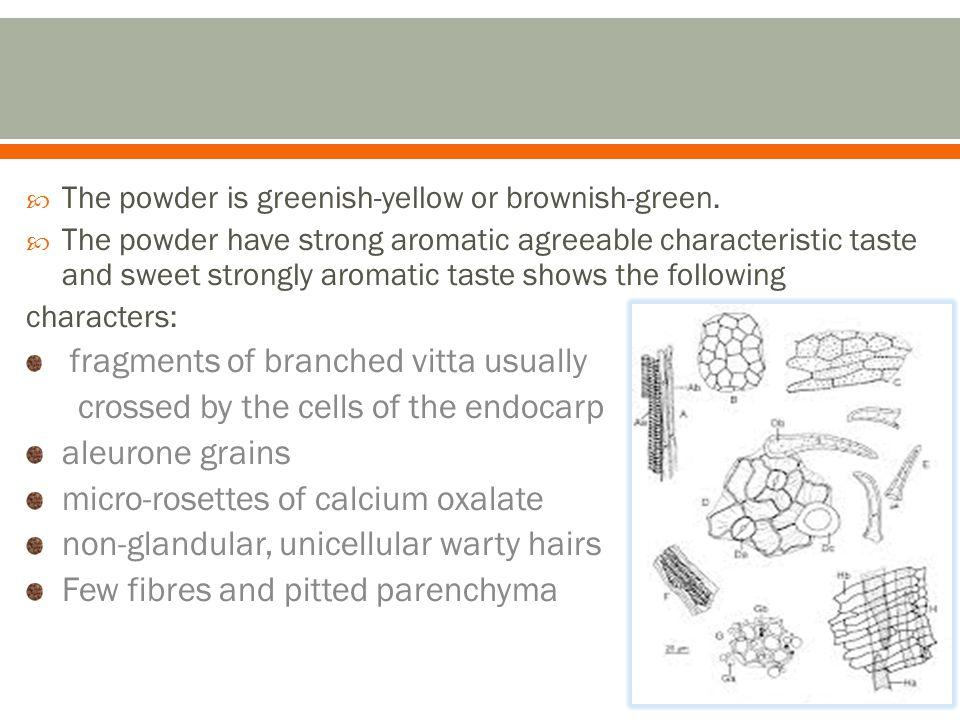 The powder is greenish-yellow or brownish-green.