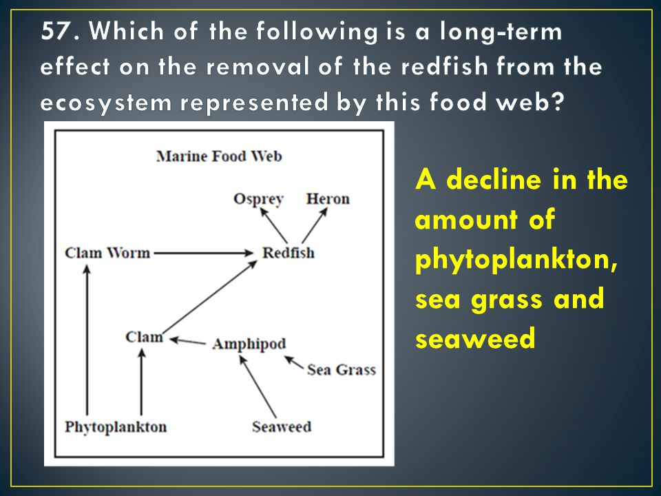 A decline in the amount of phytoplankton, sea grass and seaweed