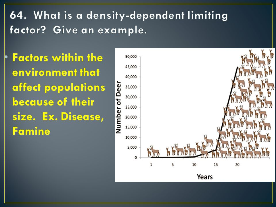 Factors within the environment that affect populations because of their size. Ex. Disease, Famine