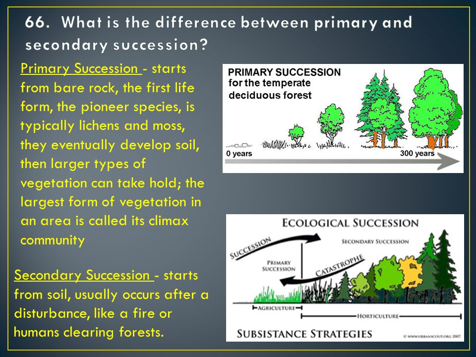 Secondary Succession - starts from soil, usually occurs after a disturbance, like a fire or humans clearing forests.