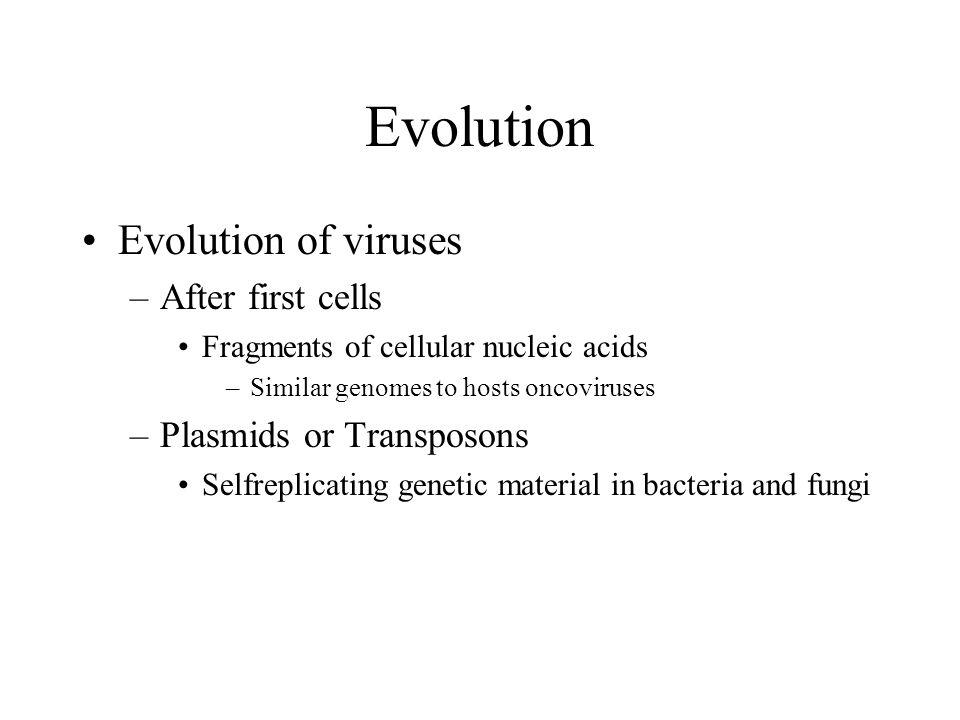 Evolution Evolution of viruses –After first cells Fragments of cellular nucleic acids –Similar genomes to hosts oncoviruses –Plasmids or Transposons S