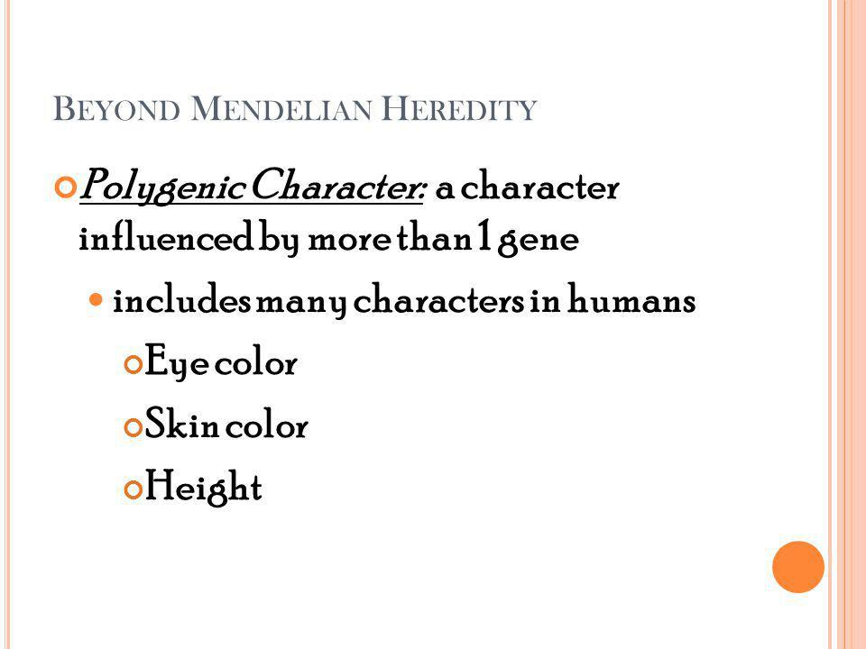 B EYOND M ENDELIAN H EREDITY Polygenic Character: a character influenced by more than 1 gene includes many characters in humans Eye color Skin color Height