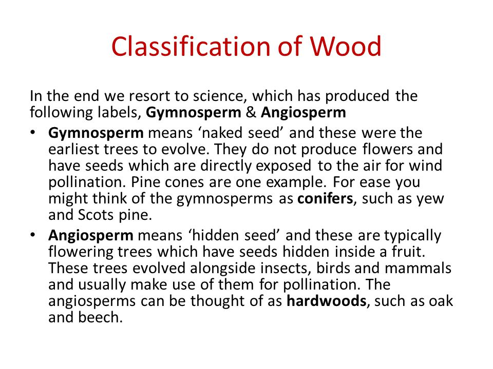 Classification of Wood In the end we resort to science, which has produced the following labels, Gymnosperm & Angiosperm Gymnosperm means naked seed and these were the earliest trees to evolve.