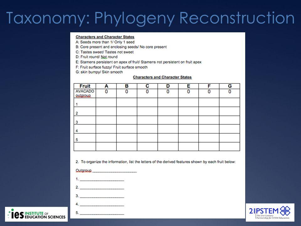 Taxonomy: Phylogeny Reconstruction