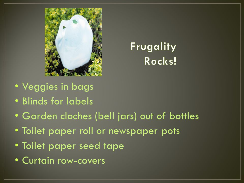 Veggies in bags Blinds for labels Garden cloches (bell jars) out of bottles Toilet paper roll or newspaper pots Toilet paper seed tape Curtain row-covers