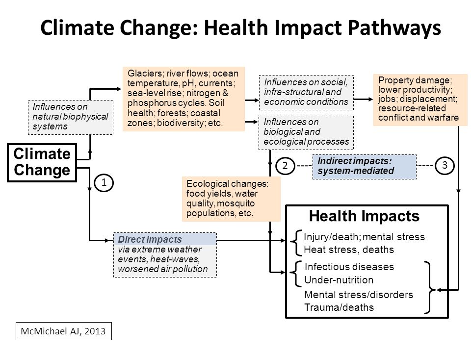 Climate Change Influences on Health in Australia Already apparent: prior risks amplified by climate change Uptrend in av annual no.
