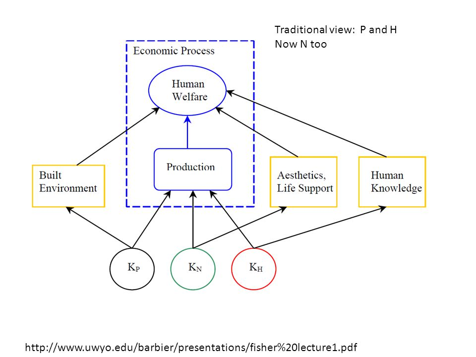 http://www.uwyo.edu/barbier/presentations/fisher%20lecture1.pdf Traditional view: P and H Now N too