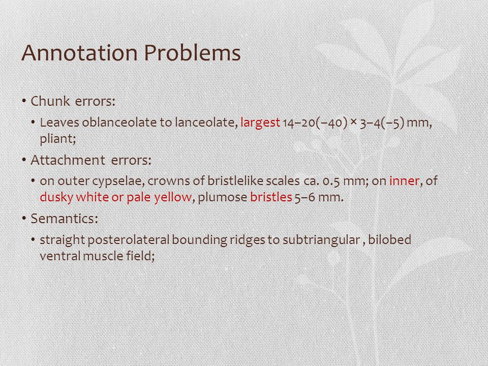 Annotation Problems Chunk errors: Leaves oblanceolate to lanceolate, largest 14–20(–40) × 3–4(–5) mm, pliant; Attachment errors: on outer cypselae, cr