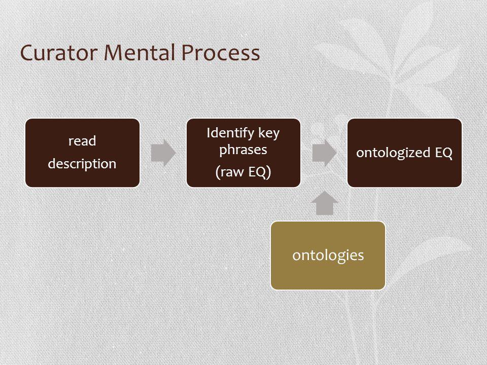 Curator Mental Process read description Identify key phrases (raw EQ) ontologized EQ ontologies