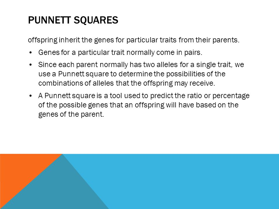 PUNNETT SQUARES offspring inherit the genes for particular traits from their parents. Genes for a particular trait normally come in pairs. Since each