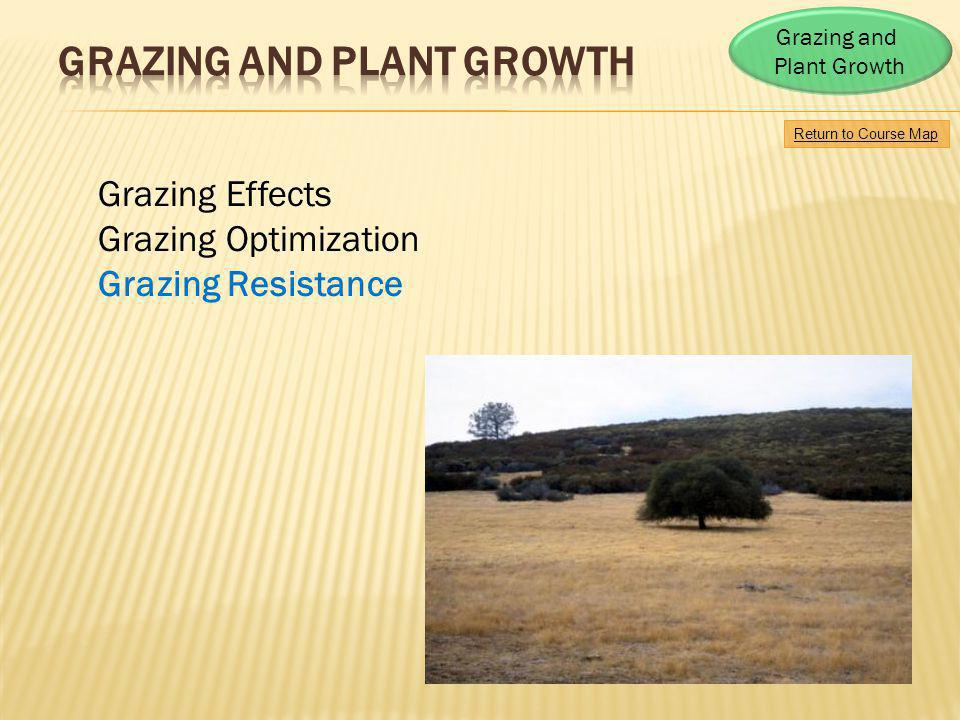 Return to Course Map Grazing and Plant Growth Grazing Effects Grazing Optimization Grazing Resistance