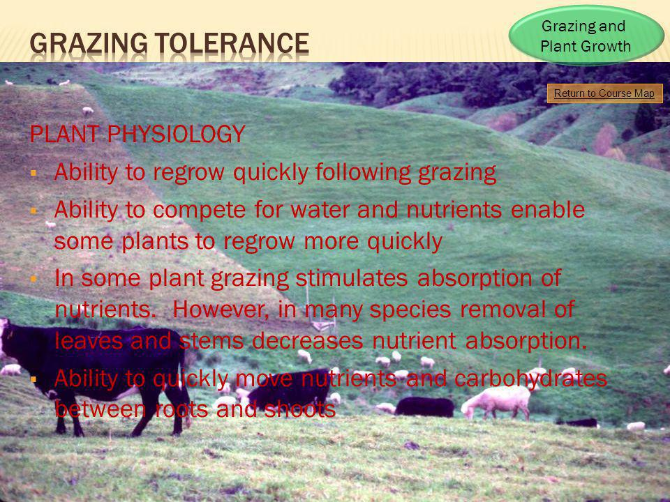 Return to Course Map Grazing and Plant Growth PLANT PHYSIOLOGY Ability to regrow quickly following grazing Ability to compete for water and nutrients