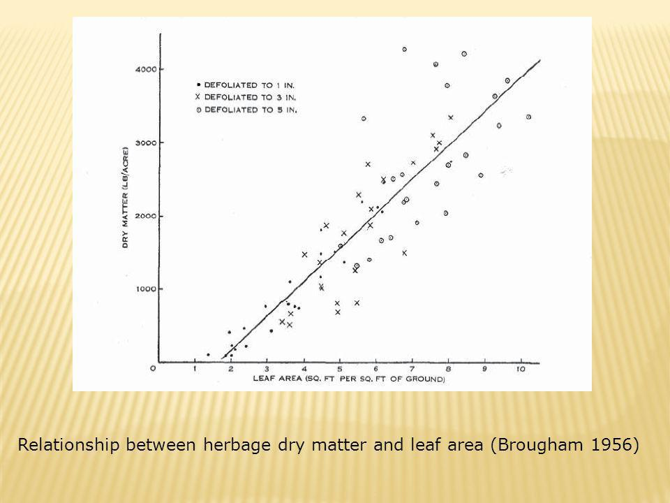 Relationship between herbage dry matter and leaf area (Brougham 1956)