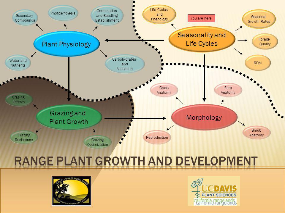 Plant Physiology Seasonality and Life Cycles Grazing and Plant Growth Seasonal Growth Rates Germination and Seedling Establishment Grazing Optimizatio
