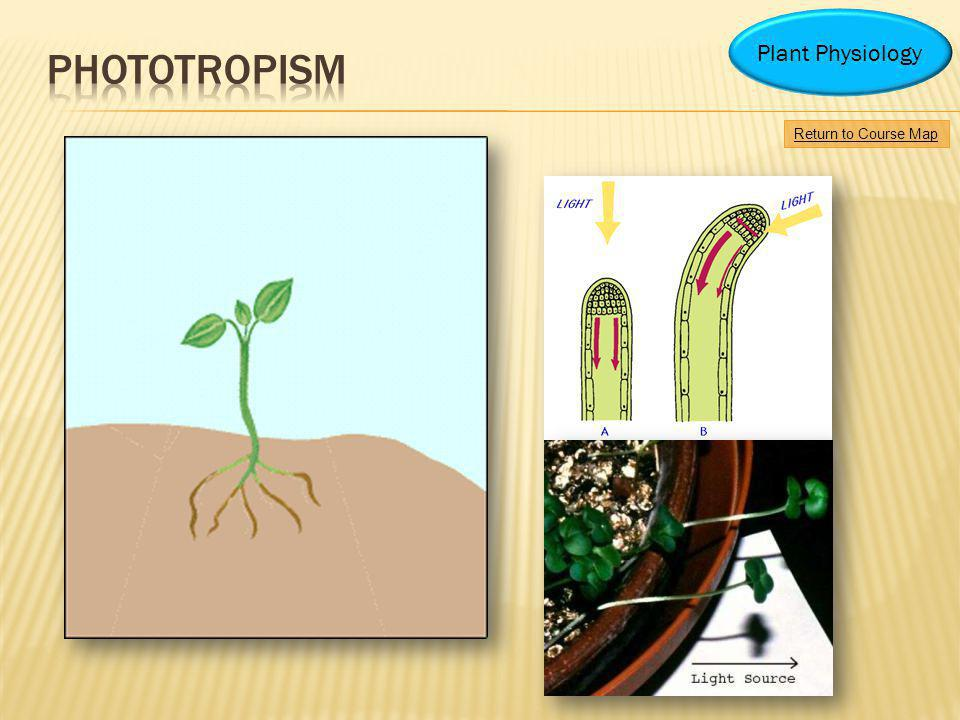 Return to Course Map Plant Physiology