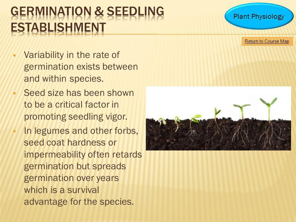 Variability in the rate of germination exists between and within species. Seed size has been shown to be a critical factor in promoting seedling vigor