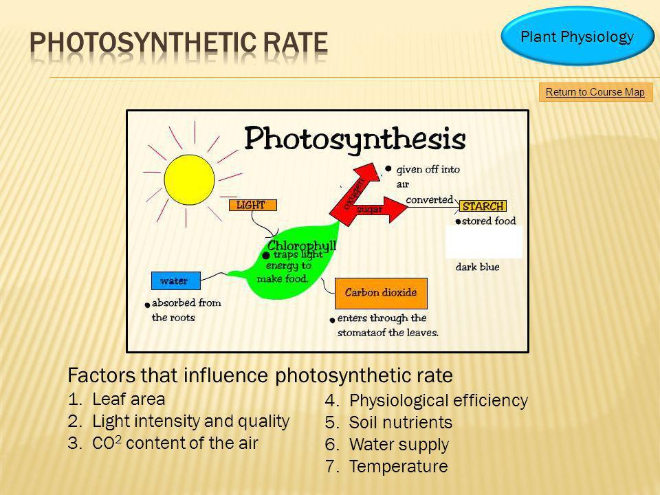 4.Physiological efficiency 5.Soil nutrients 6.Water supply 7.Temperature Factors that influence photosynthetic rate 1.Leaf area 2.Light intensity and