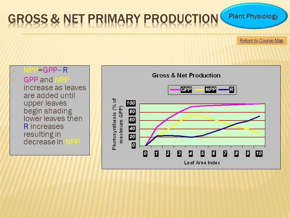 NPP=GPP - R GPP and NPP increase as leaves are added until upper leaves begin shading lower leaves then R increases resulting in decrease in NPP Retur