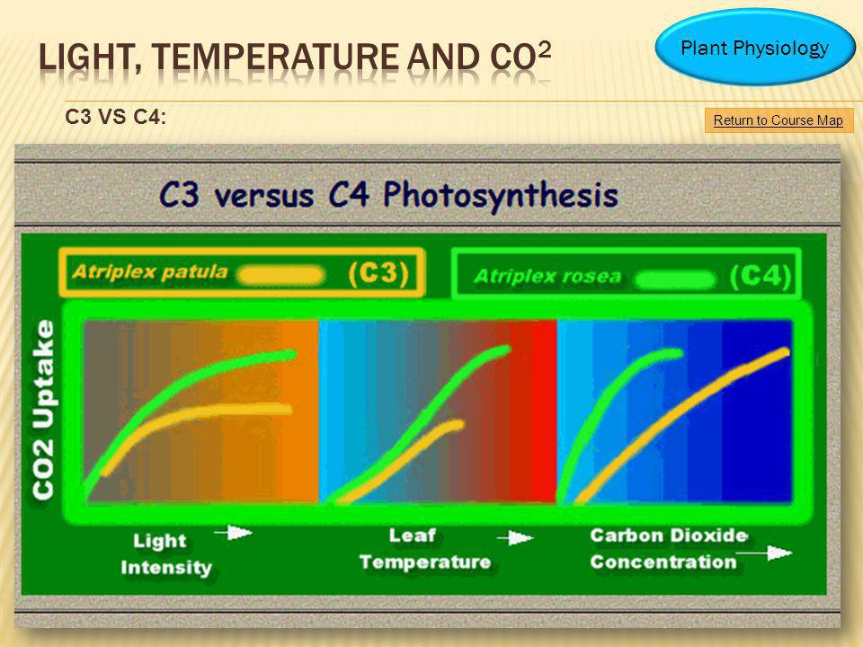 Return to Course Map Plant Physiology C3 VS C4: