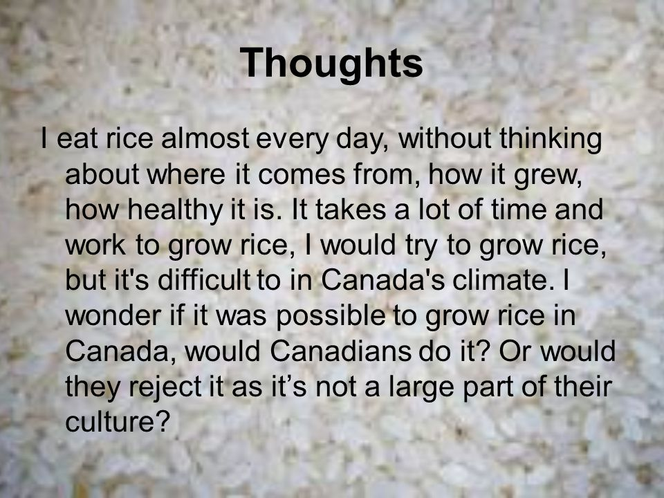 Thoughts I eat rice almost every day, without thinking about where it comes from, how it grew, how healthy it is.