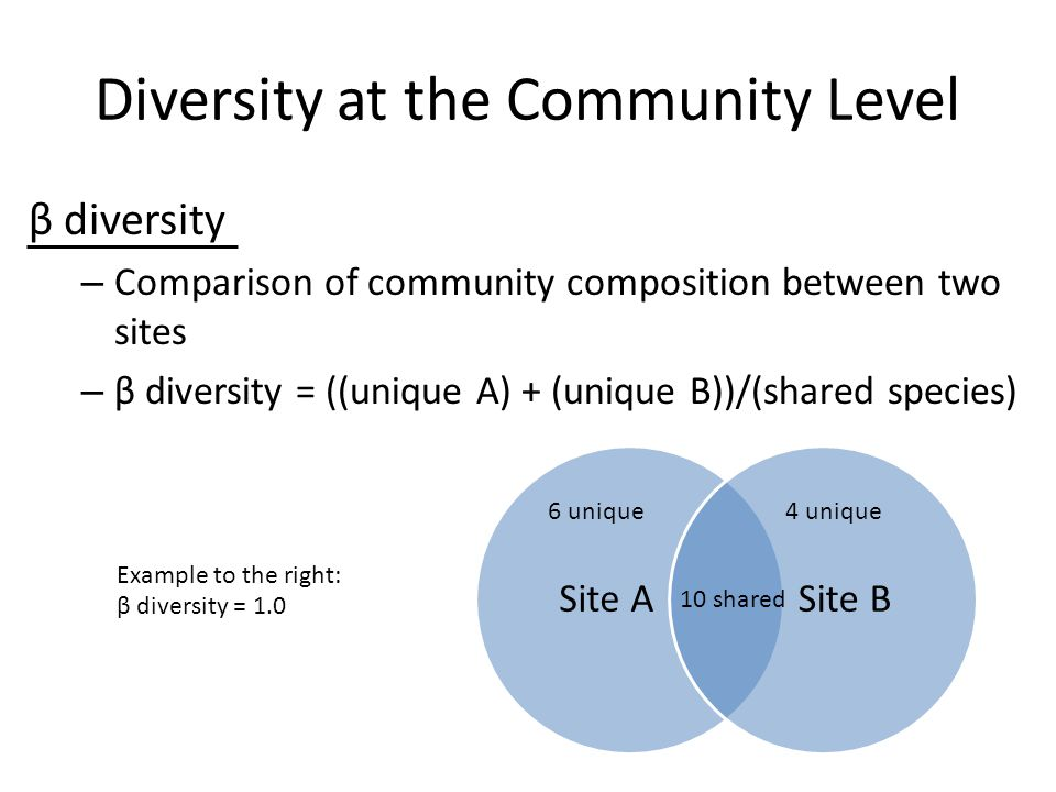 Diversity at the Community Level β diversity – Comparison of community composition between two sites – β diversity = ((unique A) + (unique B))/(shared species) 6 unique 10 shared 4 unique Example to the right: β diversity = 1.0