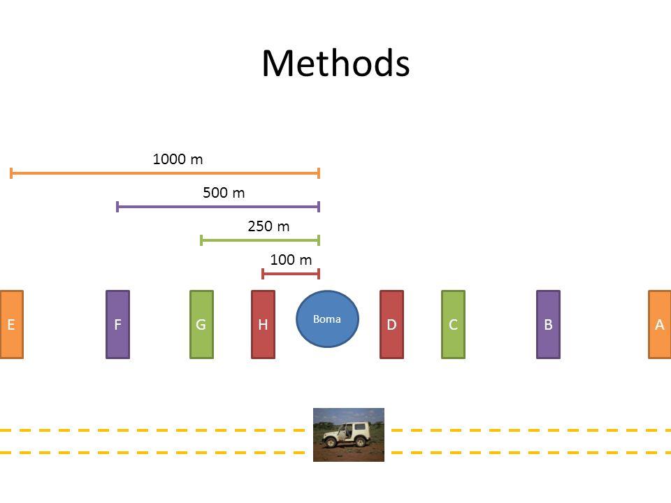 β diversity as a proxy for community homogeneity around bomas Boma 1BBoma 1C Unique to Site 1B: 3 species Unique to Site 1C: 1 species Common to both: 10 species β diversity / shared = 0.4 1.Perform for all combinations of sites within a boma 2.Plot (β diversity / shared) against distance for each side and across entire boma 3.Small values and small slope indicates homogeneity between sites Boma HDGCBFAE