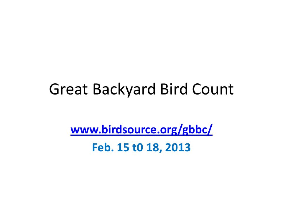 Great Backyard Bird Count www.birdsource.org/gbbc/ Feb. 15 t0 18, 2013