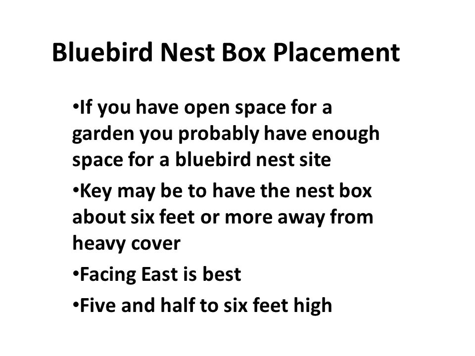 Bluebird Nest Box Placement If you have open space for a garden you probably have enough space for a bluebird nest site Key may be to have the nest box about six feet or more away from heavy cover Facing East is best Five and half to six feet high