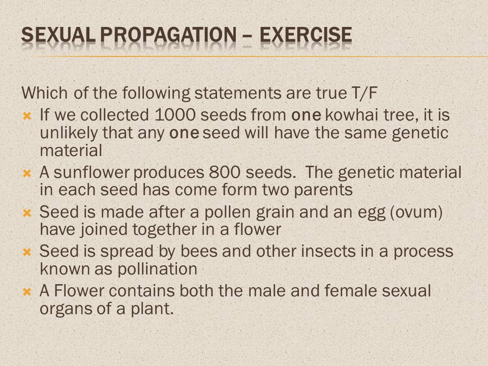Which of the following statements are true T/F If we collected 1000 seeds from one kowhai tree, it is unlikely that any one seed will have the same ge