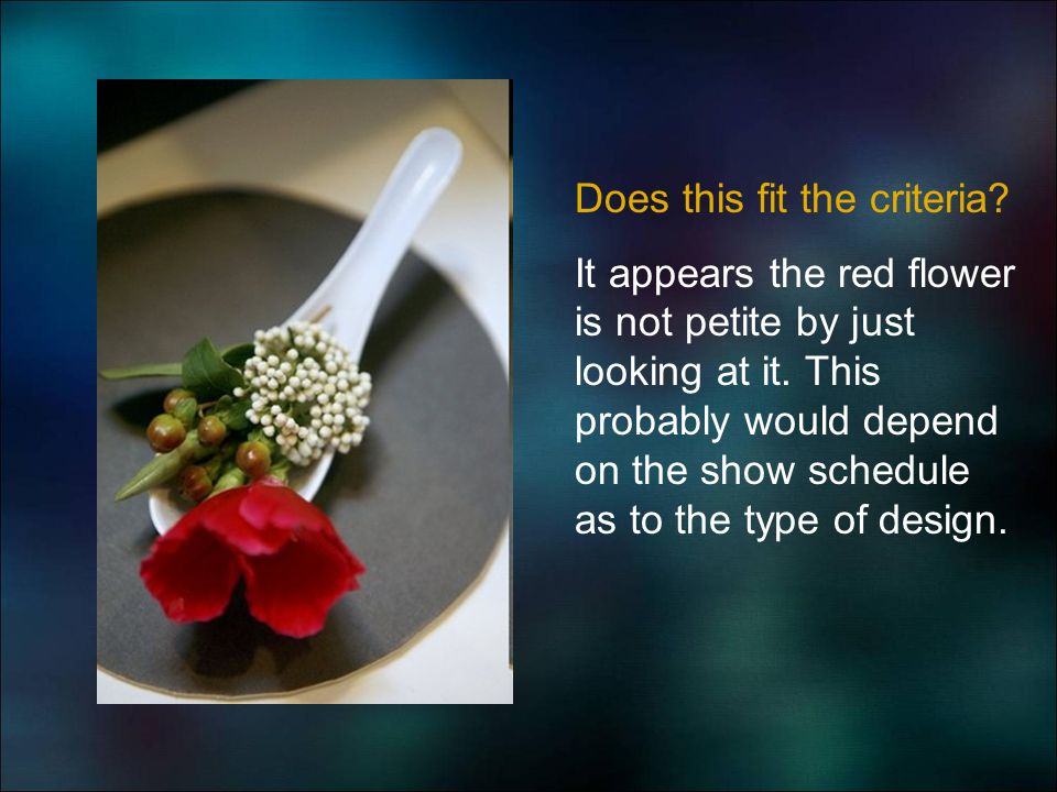 Does this fit the criteria? It appears the red flower is not petite by just looking at it. This probably would depend on the show schedule as to the t