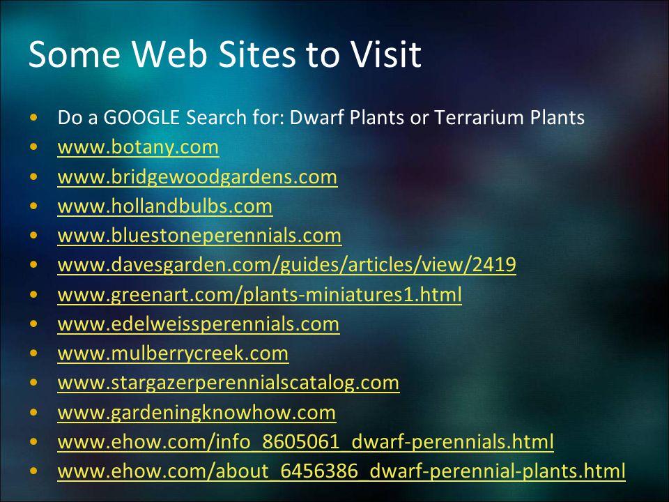 Some Web Sites to Visit Do a GOOGLE Search for: Dwarf Plants or Terrarium Plants www.botany.com www.bridgewoodgardens.com www.hollandbulbs.com www.blu