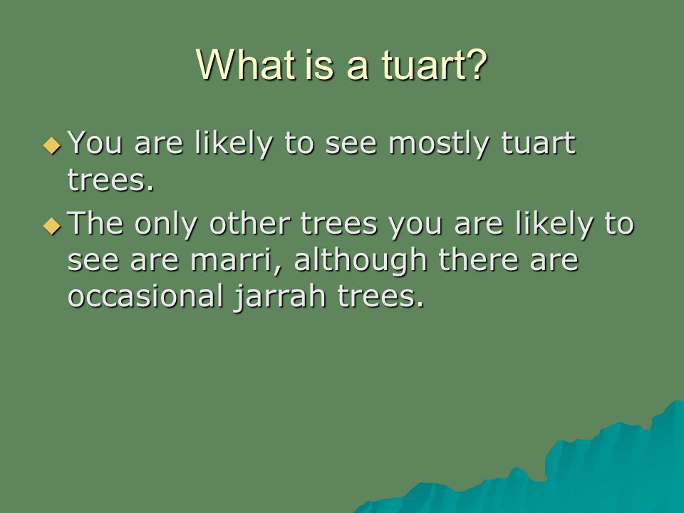 What is a tuart. You are likely to see mostly tuart trees.