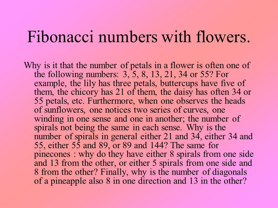 Fibonacci numbers with flowers.