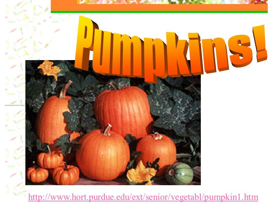 http://www.hort.purdue.edu/ext/senior/vegetabl/pumpkin1.htm