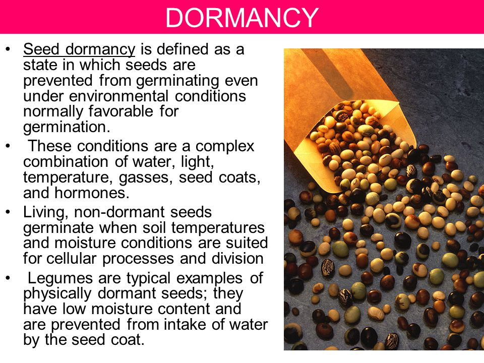 DORMANCY Seed dormancy is defined as a state in which seeds are prevented from germinating even under environmental conditions normally favorable for germination.