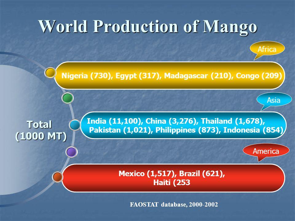 Total (1000 MT) World Production of Mango Mexico (1,517), Brazil (621), Haiti (253 India (11,100), China (3,276), Thailand (1,678), Pakistan (1,021), Philippines (873), Indonesia (854) Nigeria (730), Egypt (317), Madagascar (210), Congo (209) Africa Asia America FAOSTAT database, 2000-2002