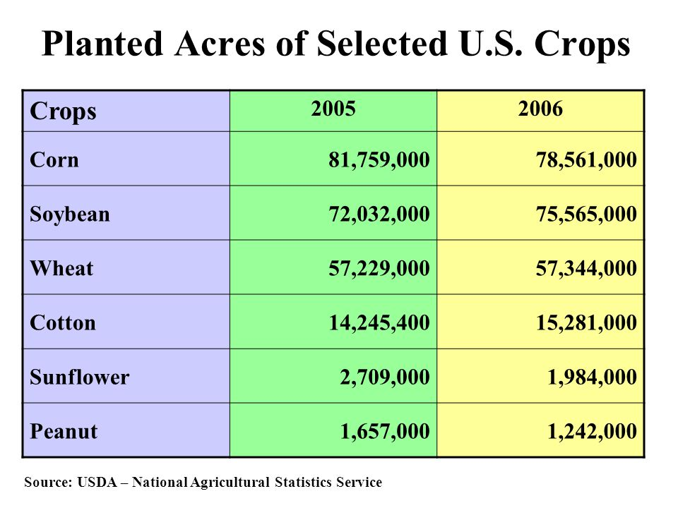 Planted Acres of Selected U.S. Crops Crops 20052006 Corn81,759,00078,561,000 Soybean72,032,00075,565,000 Wheat57,229,00057,344,000 Cotton14,245,40015,