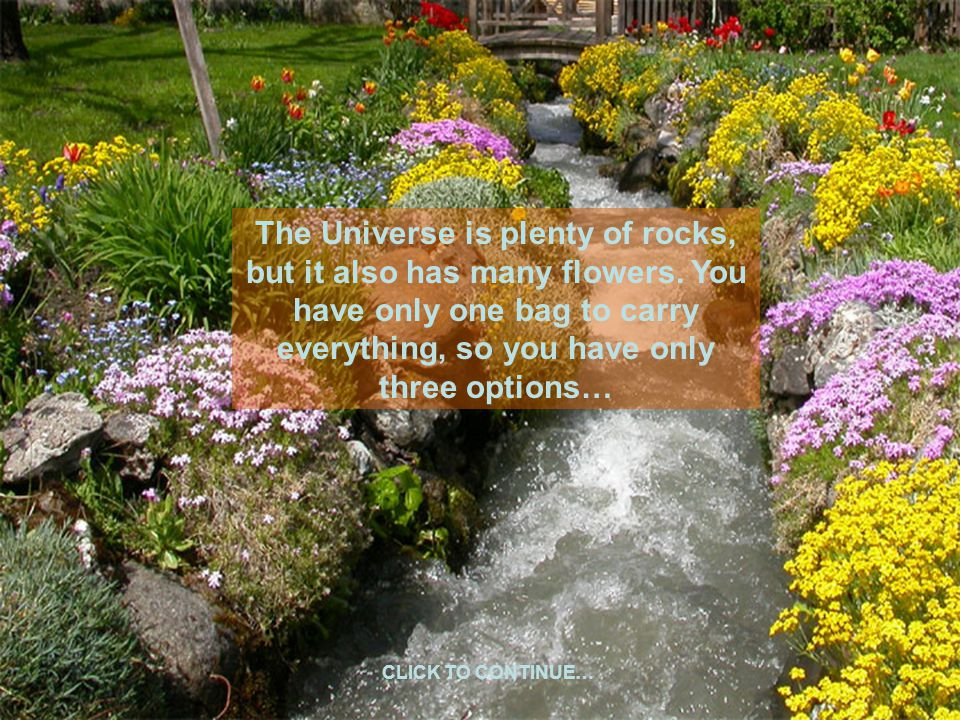 The Universe is plenty of rocks, but it also has many flowers. You have only one bag to carry everything, so you have only three options… CLICK TO CON