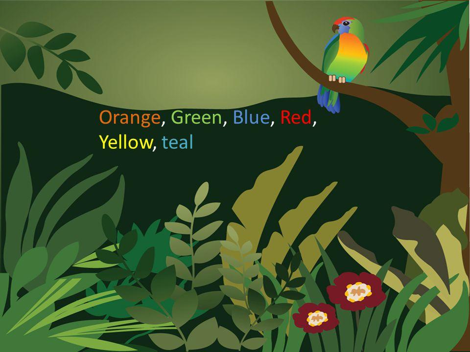 Orange, Green, Blue, Red, Yellow, teal