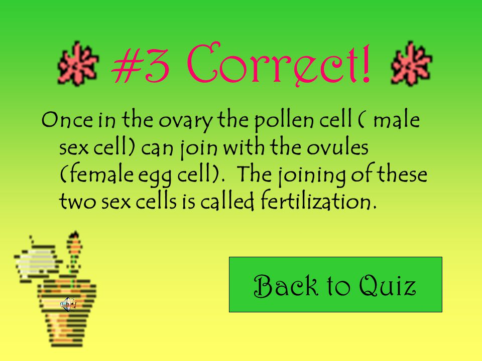 #2 Correct! Pollination occurs with the help of Pollinators like…. Bees Butterflies Birds Other insects Wind also helps pollination occur by carrying