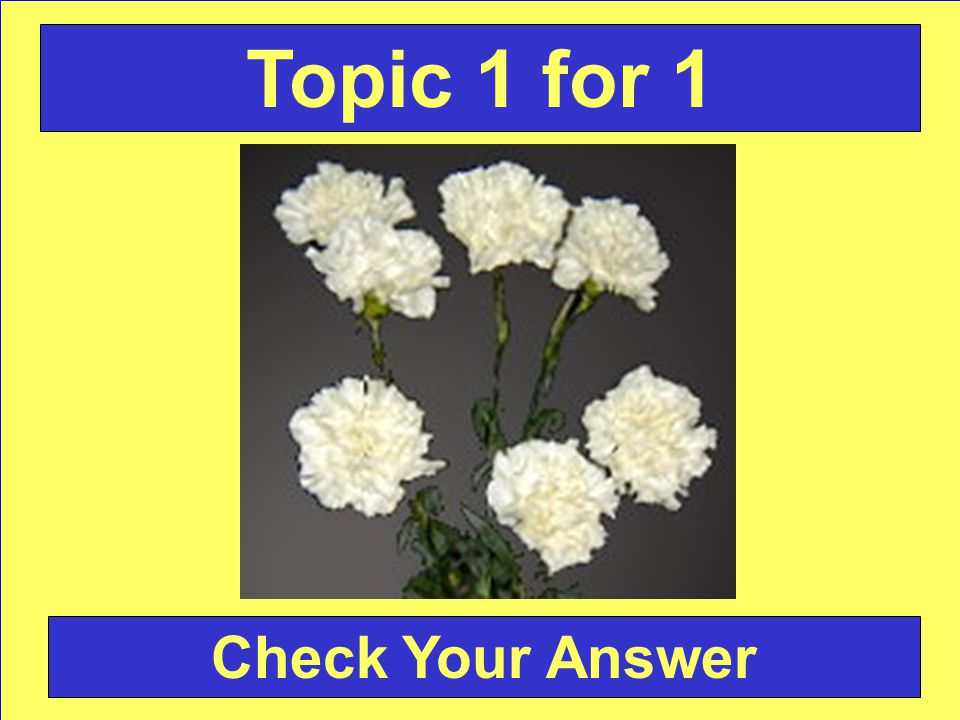 Answer: Carnation Back to the Game Board Topic 1 for 1