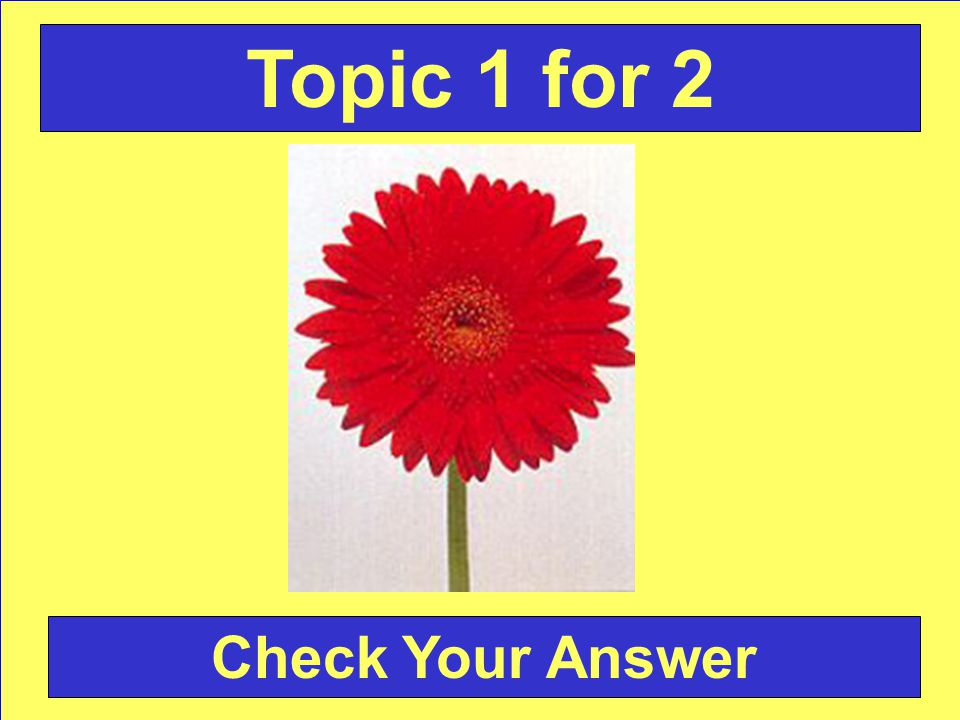 Answer: Gerbera Daisy Back to the Game Board Topic 1 for 2