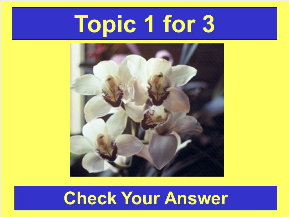 Answer: Bouquet Holder Back to the Game Board Topic 5 for 3
