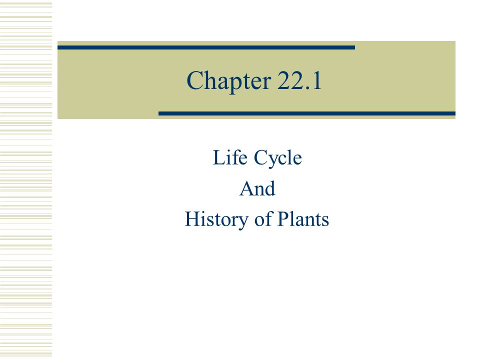 Chapter 22.1 Life Cycle And History of Plants