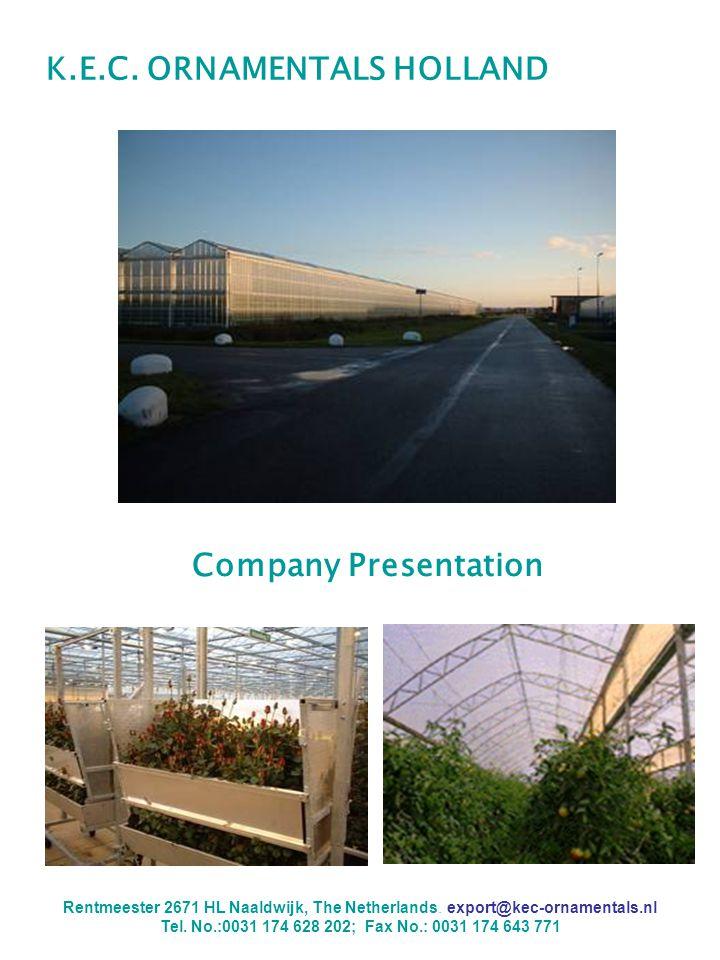 K.E.C.ORNAMENTALS HOLLAND Company Presentation Rentmeester 2671 HL Naaldwijk, The Netherlands.