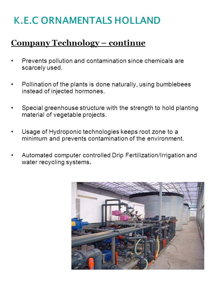 Company Technology – continue Prevents pollution and contamination since chemicals are scarcely used. Pollination of the plants is done naturally, usi