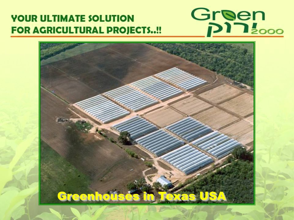 Greenhouses in Texas USA