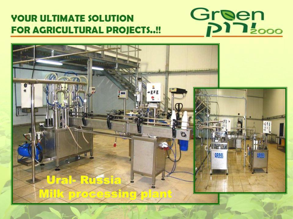 Milk processing plant Ural- Russia