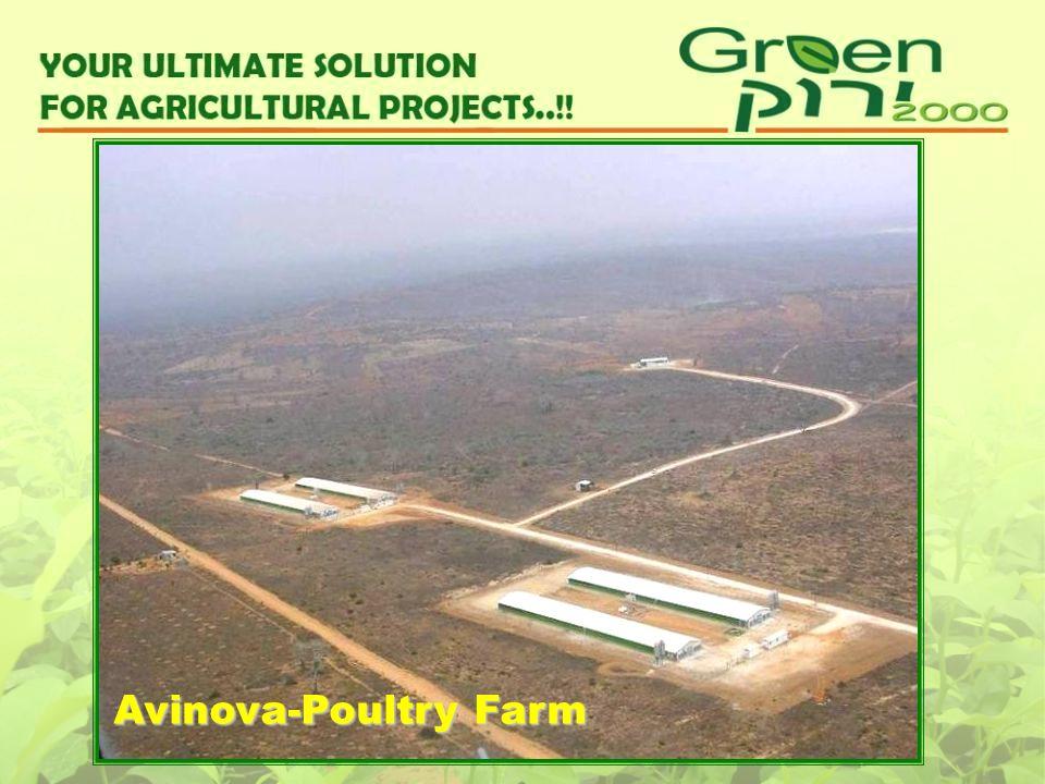 Avinova-Poultry Farm